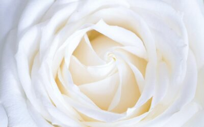 Echte Liefde – Een gedicht van Anna Jasmijn